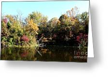 Sugar Ridge State Fish And Wildlife Area Greeting Card