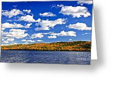 Fall Forest And Lake Greeting Card by Elena Elisseeva