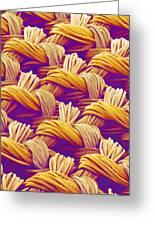 Woven Fabric, Sem Greeting Card
