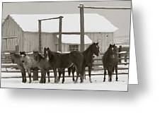 71 Ranch Greeting Card by Diane Bohna