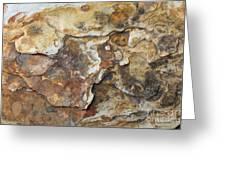 Natures Rock Art Greeting Card