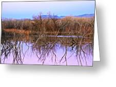 Bosque Del Apache Greeting Card
