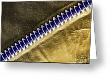 Cricket Sound Comb, Sem Greeting Card