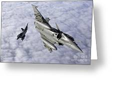 Dassault Rafale B Of The French Air Greeting Card