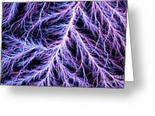 Electrical Discharge Lichtenberg Figure Greeting Card