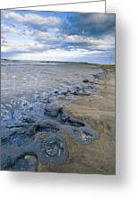 Oil Industry Pollution Greeting Card by David Nunuk
