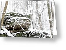 Autumn Snow Monongahela National Forest Greeting Card