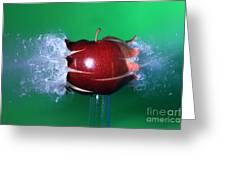 Bullet Hitting An Apple Greeting Card