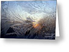 Frost On A Windowpane Greeting Card by Thomas R Fletcher