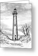 Little Point Sable Greeting Card
