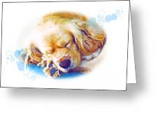 A 003 Greeting Card