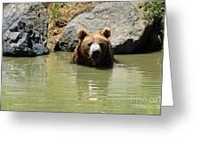 A Bear's Hot Tub Greeting Card