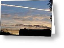 A Bird Outlined Against The Setting Sky At Dover Castle Greeting Card