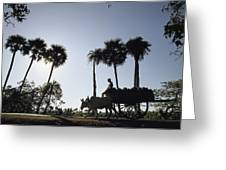 A Boy Rides On An Ox-drawn Cart Greeting Card
