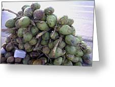 A Bunch Of Tender Coconuts Being Sold By A Vendor On The Street Greeting Card