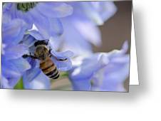 A Busy Bee Greeting Card