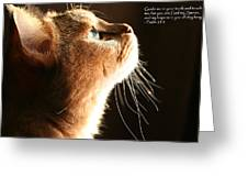 A Cat Prayer Greeting Card