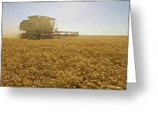 A Combine Harvester Works A Field Greeting Card