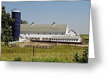 A  Dairy Farm Greeting Card