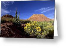 A Desert Landscape With Rock Formations Greeting Card