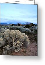 A Desert View After Sunset Greeting Card
