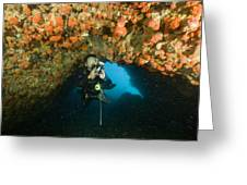 A Diver Explores A Cavern With Orange Greeting Card