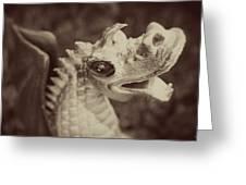 A Dragon's Tale - Series 2 Greeting Card