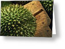 A Durian Fruit - Popular In South East Greeting Card by Justin Guariglia