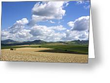 A Field Of Wheat Auvergne. France Greeting Card