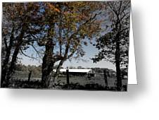 A Focal Setting  Greeting Card
