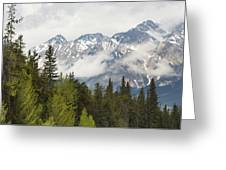 A Forest And The Rocky Mountains Greeting Card