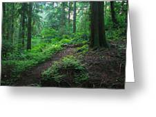 A Forest Green Greeting Card