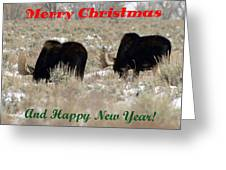 A Friends Christmas Greeting Card