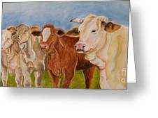 A Gathering Of Cows Greeting Card