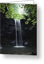 A Gentle Woodland Waterfall With Maple Greeting Card