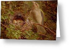A Greenfinch At Its Nest Greeting Card