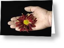 A Hand Holding A Red Rover Greeting Card