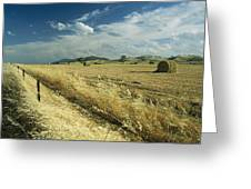 A Hay Field With Bales Sitting Greeting Card