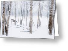 A Horse Stands Beside A Forest Of Bare Greeting Card