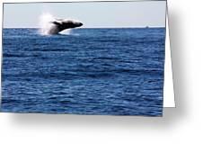 A Huge Splash Greeting Card