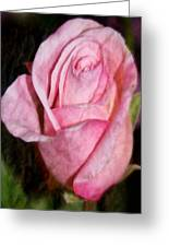 A Kiss By A Rose Greeting Card