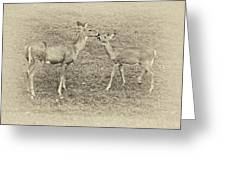 A Kiss For Mom Sepia Greeting Card