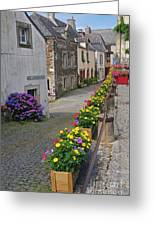 A Line Of Flowers In A French Village Greeting Card