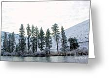 A Line Of Trees In Winter  Greeting Card