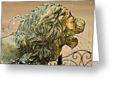 A Lion In Summer Greeting Card