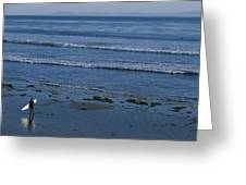 A Longboard Surfer Watches The Surf Greeting Card by Rich Reid