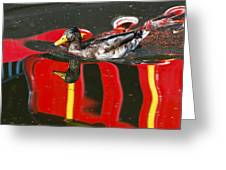 A Mallard Duck On The Canal Greeting Card