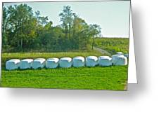 A Marshmallow World In Wisconsin Greeting Card