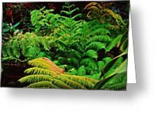 A Mass Of Ferns Greeting Card