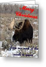 A Moose Christmas Wish Greeting Card